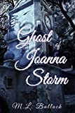 The Ghost of Joanna Storm (Morgan's Rock Book 3) (English Edition)